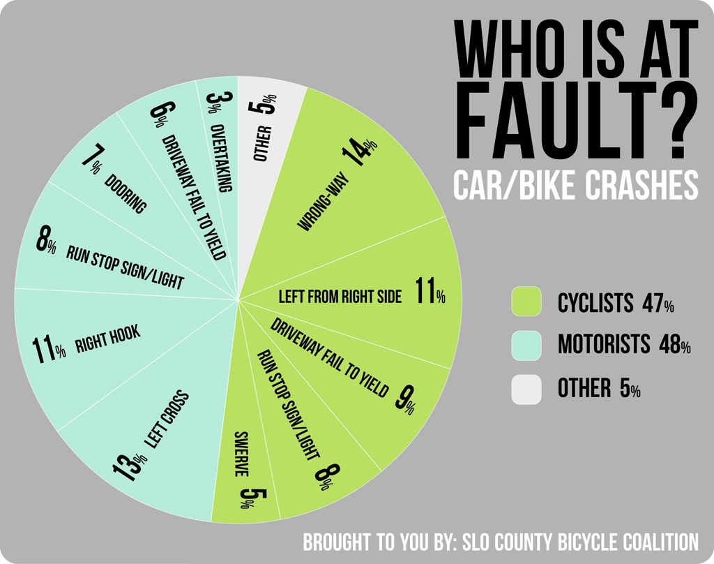 WHOSE AT FAULT INFO GRAPHIC